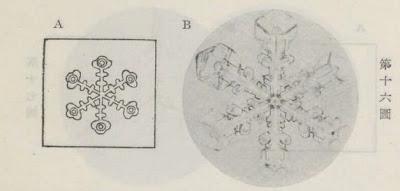 『雪華図説』の研究 模写図と顕微鏡写真と比較 第十六図