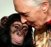 (22/11/011) La población humana está expulsando a los animales al borde de la extinción