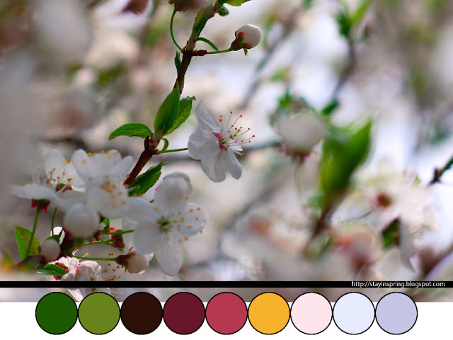 Colour palette blooming cherry