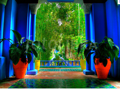 Lolitaloves november 2011 - Jardin majorelle yves saint laurent ...