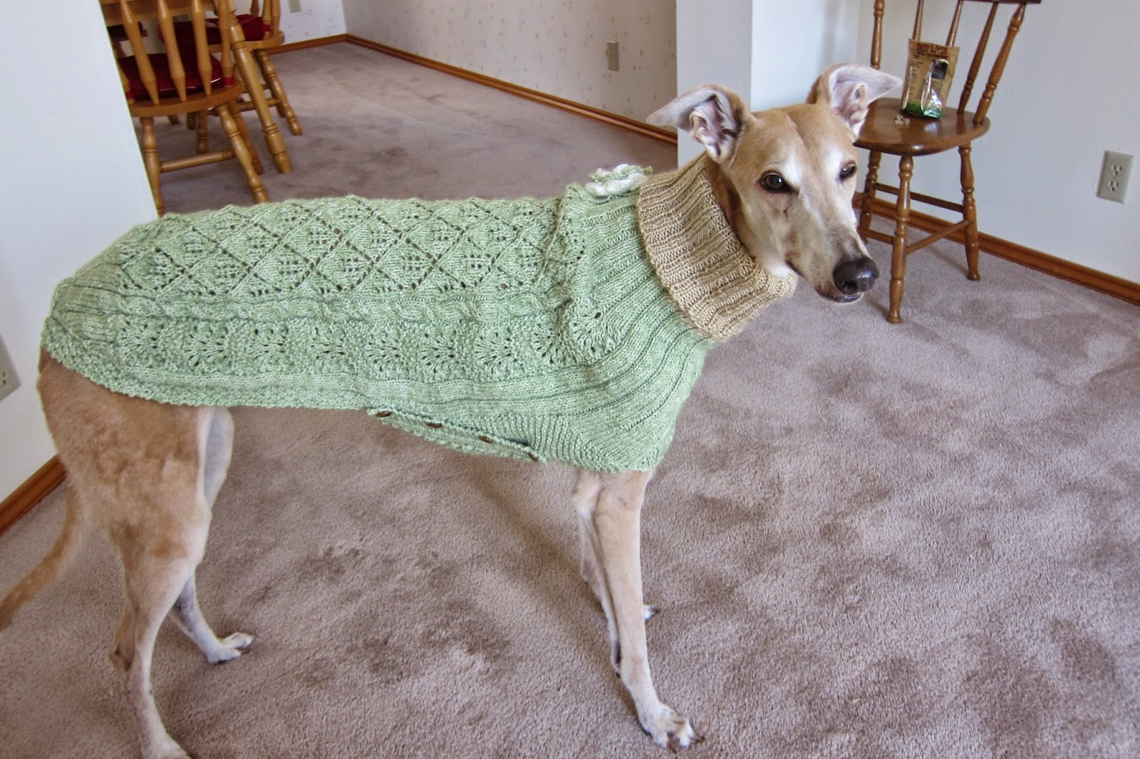 Knitting Patterns For Greyhound Dogs : Greyhound Knit Sweaters: August 2014