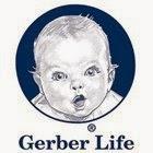 gerber life facebook logo