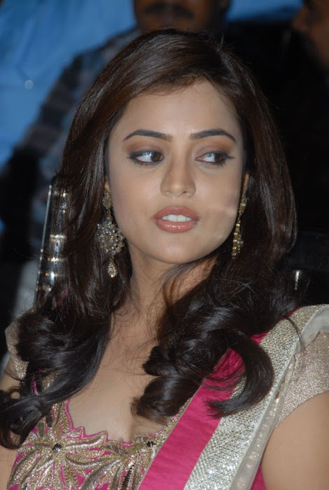 nisha agarwal at solo audio launch, nisha agarwal new hot photoshoot