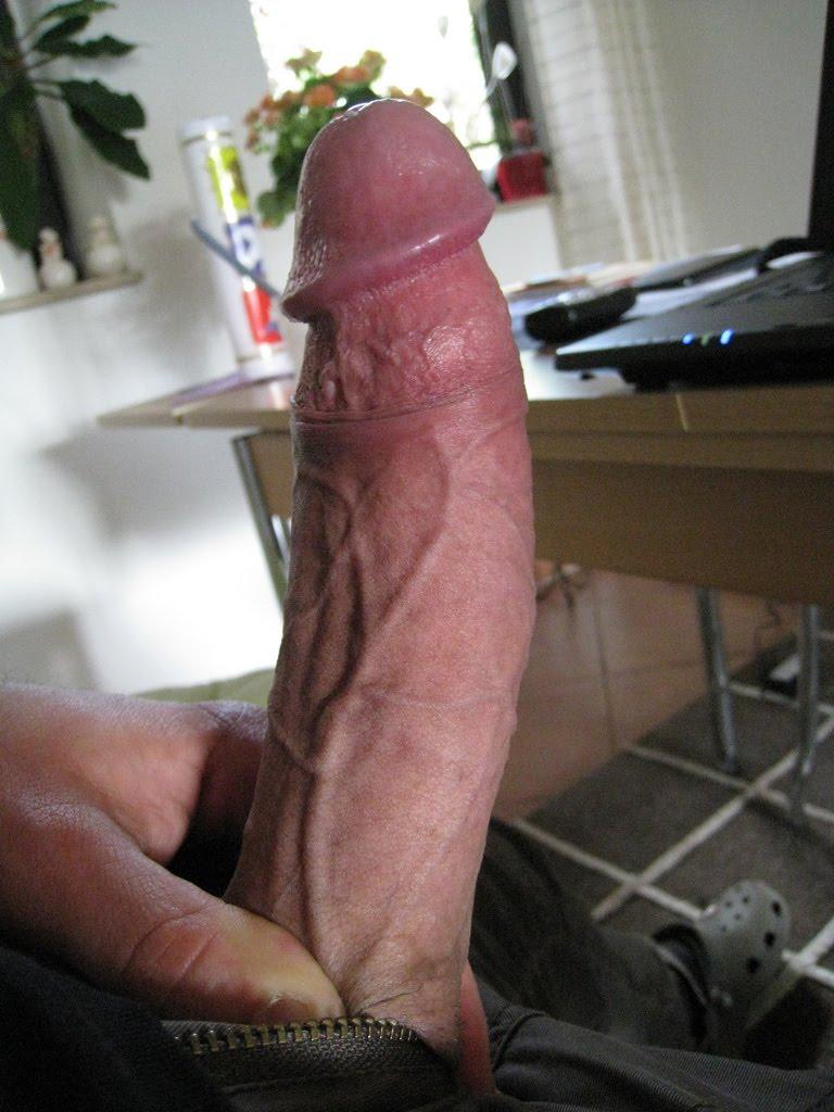 Morning Cock Sucking and Bang - Free Porn Videos -
