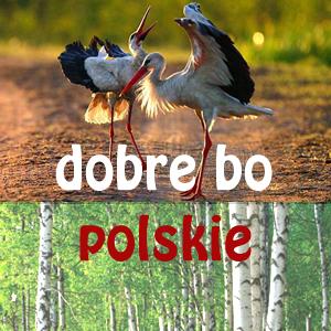 WYMIANA Dobre bo polskie