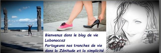 blog de vie labonoccaz