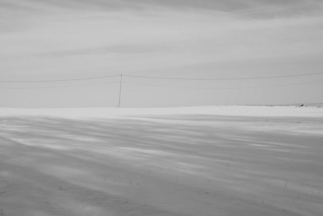 Zimowa fotografia krajobrazu. Jura Krakowsko-Częstochowska, Dolina Prądnikia. fot. Łukasz Cyrus