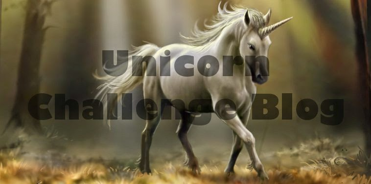 Unicorn Challenge Blog