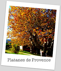 Outono na Provence
