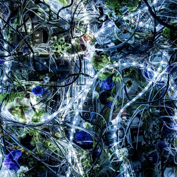 [Single] Aimer with chelly (EGOIST) – ninelie (TV size) (2016.04.15/MP3/RAR)