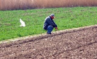 Οι αγρότες-ιδιοκτήτες φωτοβολταϊκών εξαιρούνται από την έκτακτη ειδική εισφορά αλληλεγγύης