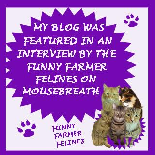 My Interview on Mousebreath!