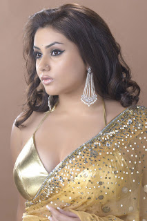 Namitha Tamil Actress Hot wallpapers photo Gallery stills images