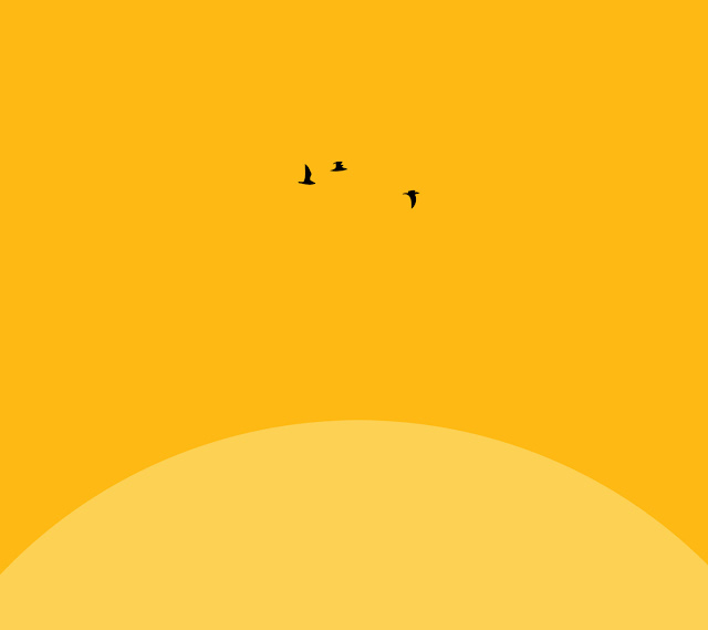 Galaxy S3 Wallpaper - Birds Around The Sun