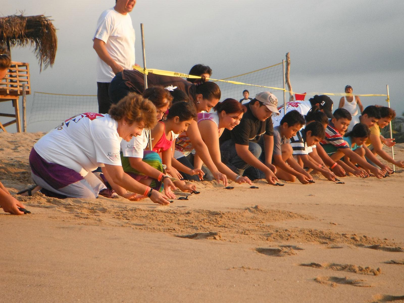 personas liberando tortugas en la playa de Puerto Vallarta