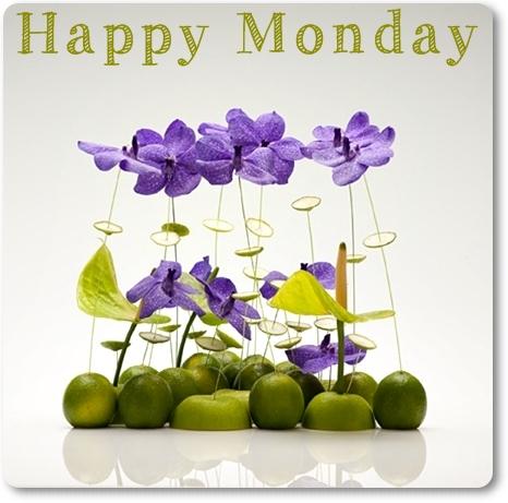 blomsterdesign frukt, blomsterdesign vanda orkidé, vanda orchids, david ragg, floral design fruits