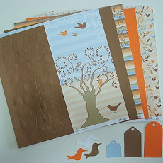 Sorteio no blog scrap collor