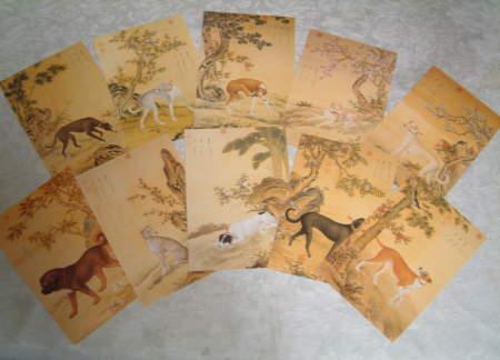 1971年中華民国(台湾) サルーキ グレーハウンド チベタン・マスティフの絵葉書10種