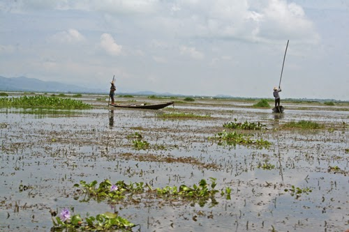 Traditional fishing on Inle Lake