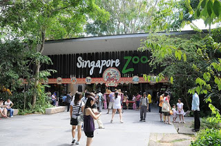 Places Singapore Zoo