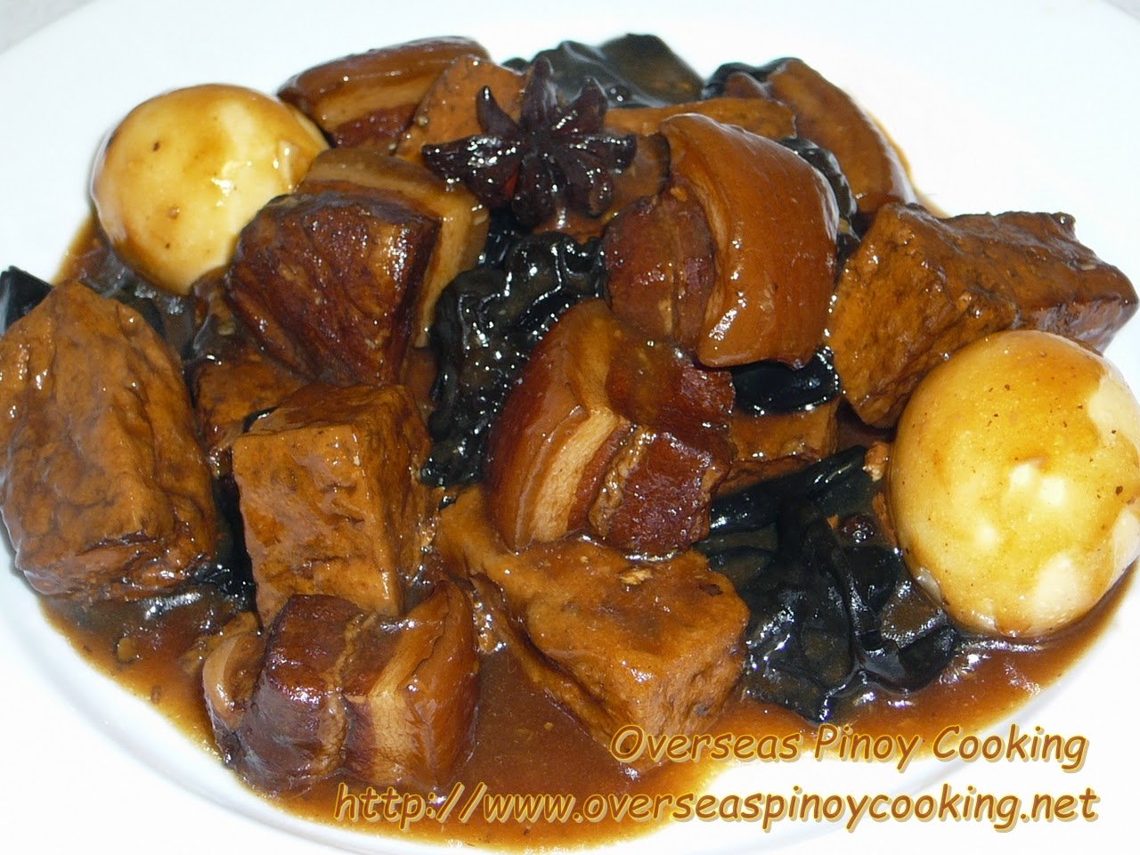 Braised Pork and Tofu with Black Fungus