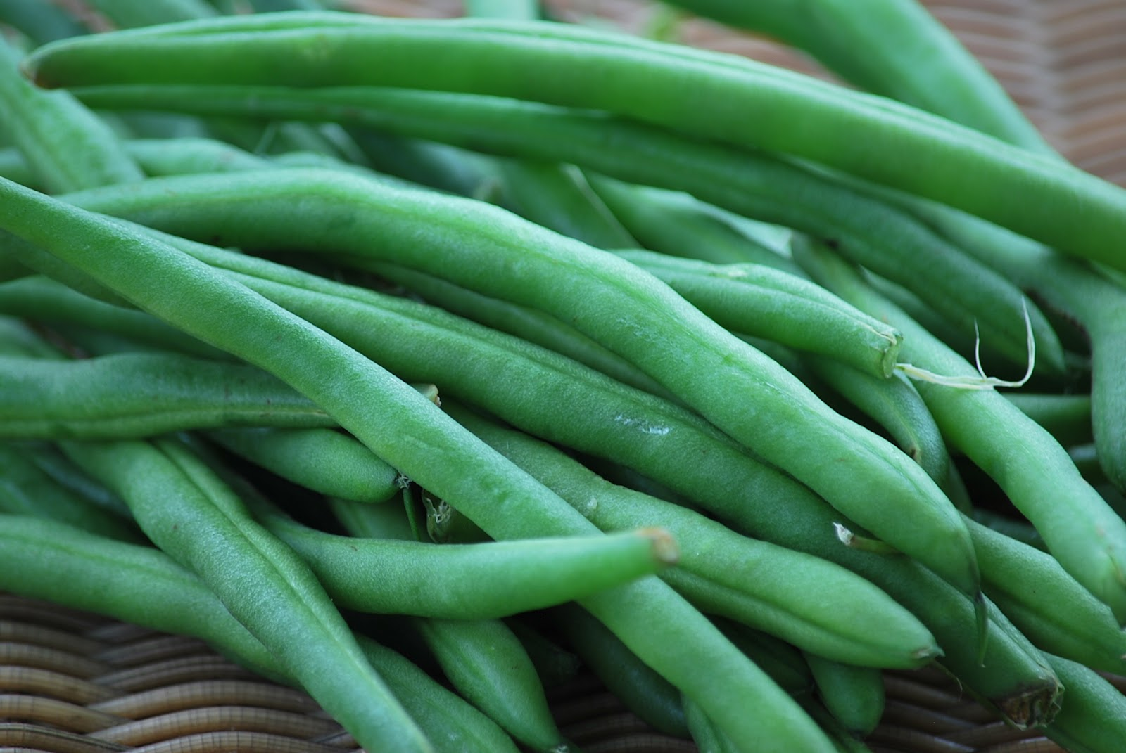 roasted green beans 1 pound green beans 1 tablespoon olive