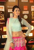 Nikki Galarani sizzing at iifa utsavam-thumbnail-7
