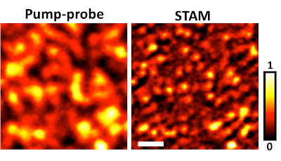 "A new type of super-resolution optical microscopy takes a high-resolution image (at right) of graphite ""nanoplatelets"" about 100 nanometers wide. The imaging system, called saturated transient absorption microscopy, or STAM, uses a trio of laser beams and represents a practical tool for biomedical and nanotechnology research. Credit: Weldon School of Biomedical Engineering, Purdue University"