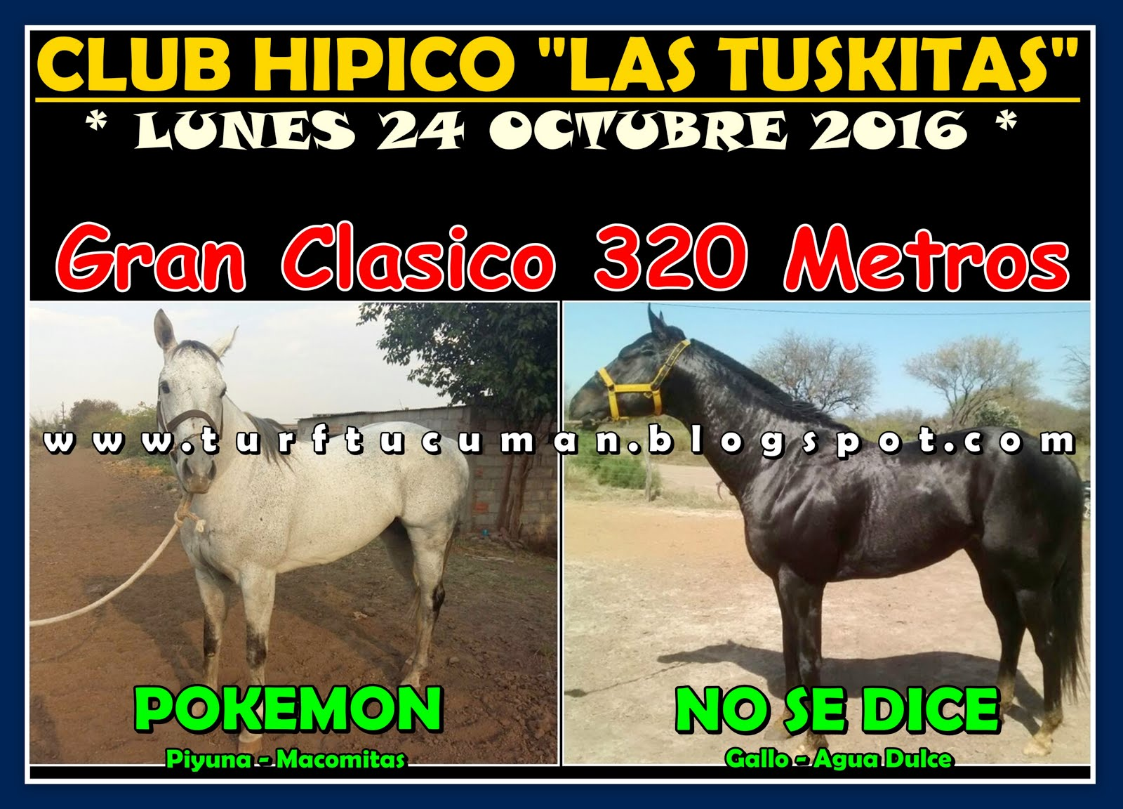 POKEMON VS NO SE DICE