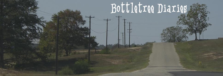 Bottletree Diaries