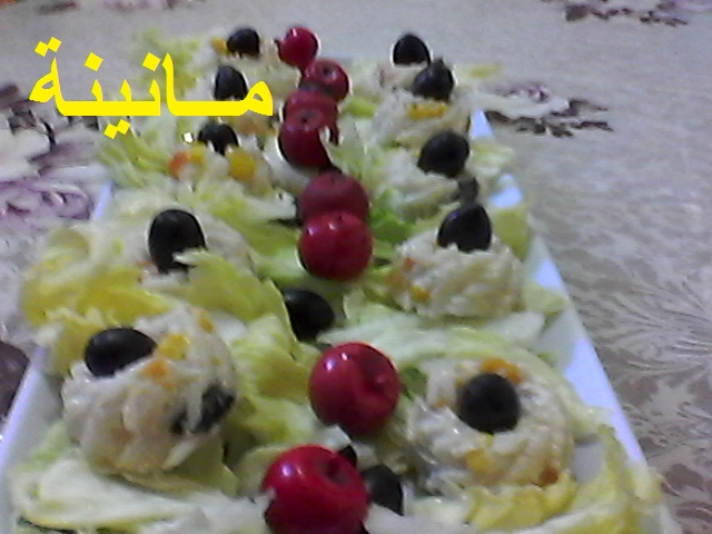 سلطة عـش الروز Photo0427.jpg