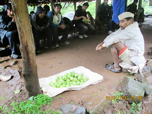 "Fresh village guava's and eatables at ""Plateau Village"" of Bhimashankar."