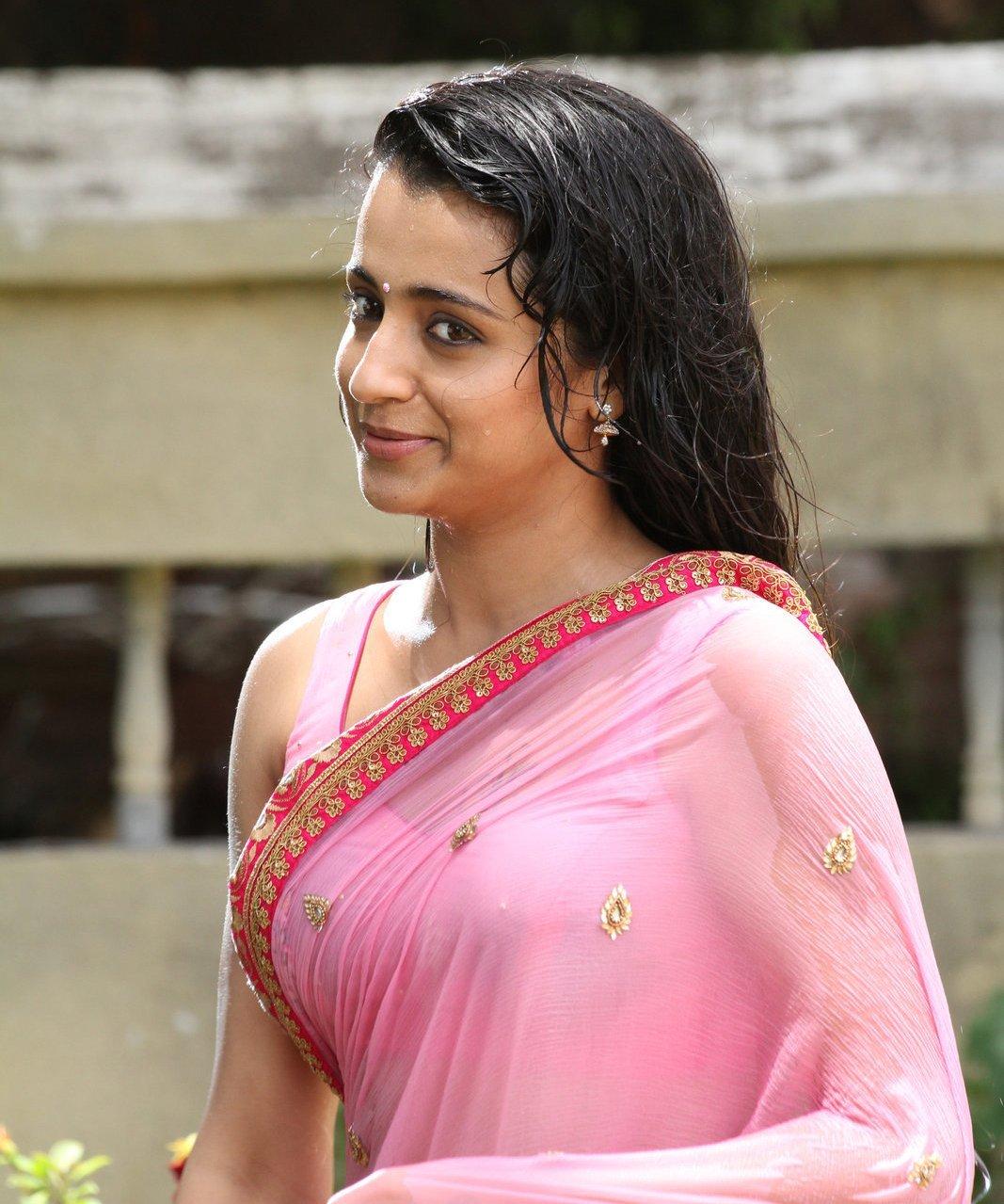 Trisha Krishnan Wet Hot Ultra Hd Photos In Pink Saree From Kalavathi Trisha Tollywood