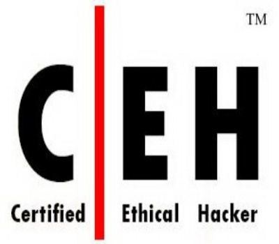 Eccouncil] Ethical Hacking CEHv7: Videos, Tools and Tutorials (2011)