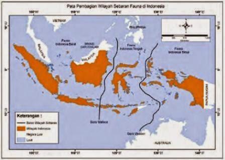 Pembagian wilayah sebaran fauna di Indonesia.