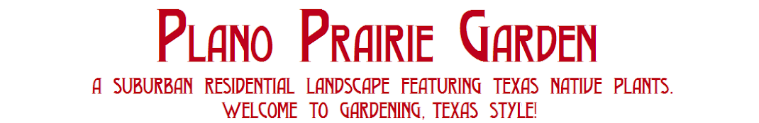 Plano Prairie Garden