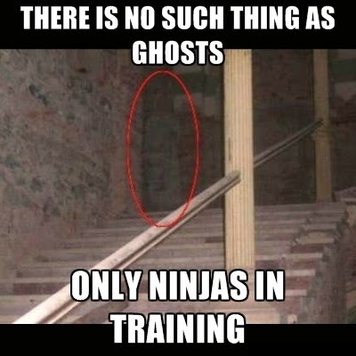 There Is No Such Thing As Ghosts - Only Ninjas In Training