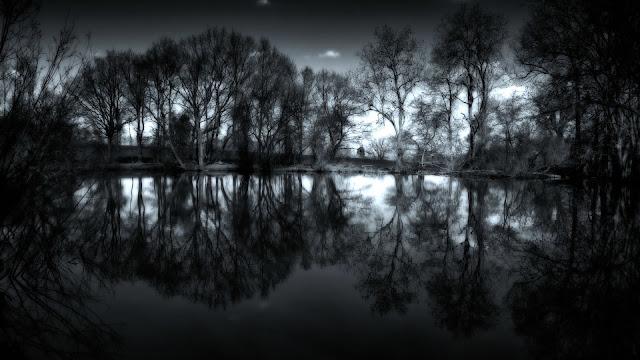 Dark Lake And Trees