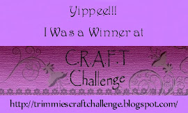 I won at CRAFT Challenge 1-11-2012