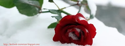 Couverture facebook rose neige 2