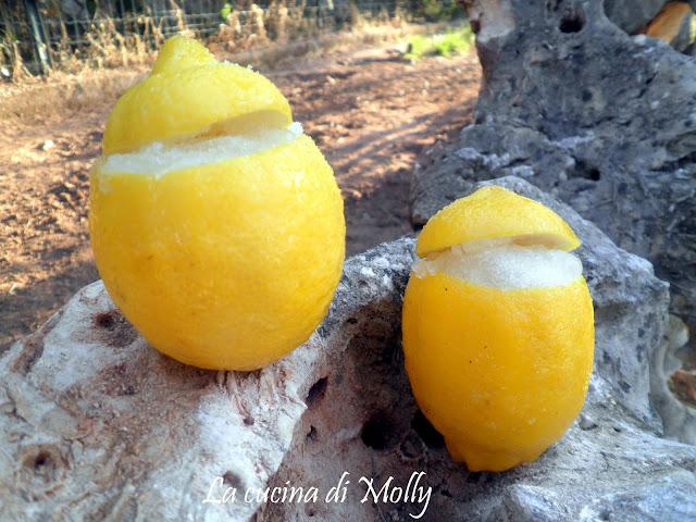 sorbetto di limone...e il blog va in vacanza!