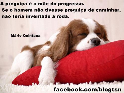 Mario quintada frases pregui 231 a blog tsn