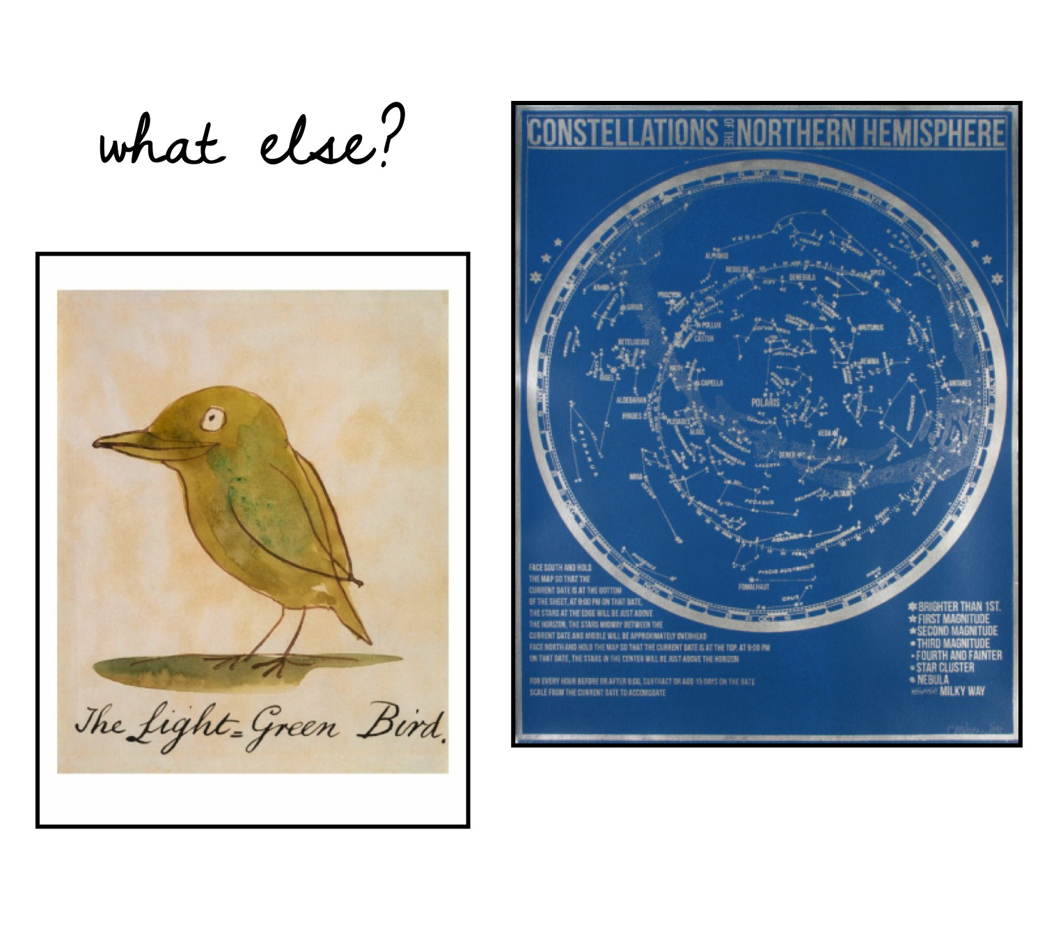 Edward Lear, The Light Green Bird; Constellations of the Northern Hemisphere prints