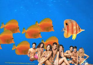 Fundo de tela dos Morangos com Açucar Jovens Festa de Verão na Praia wallpaper