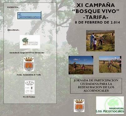http://www.tarifadirecto.es/component/content/article/13816-campana-qbosque-vivoq