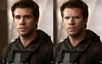 Gale Mockingjay hot or not funny