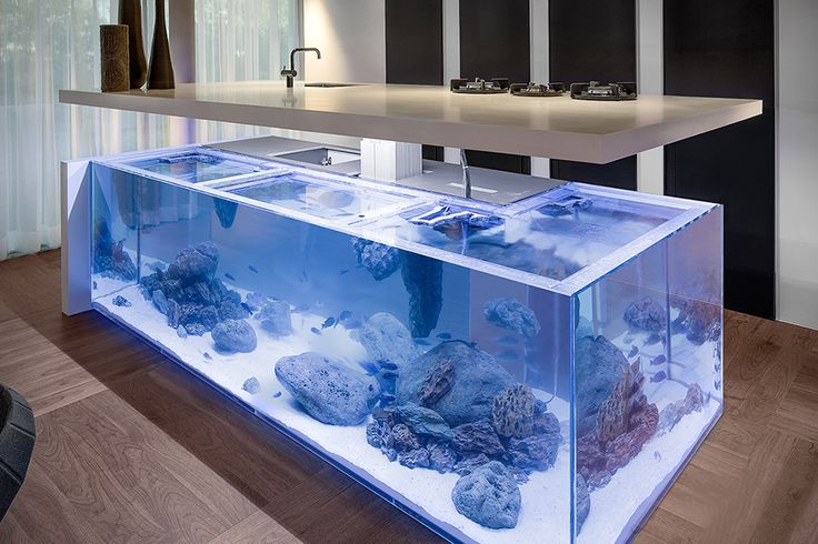 aquarium kitchen island