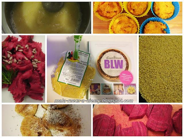 Moje kuchenne rewolucje z kaszą jaglaną i książką Alaantkowe BLW