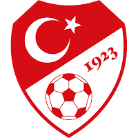 turkiye a milli futbol takimi