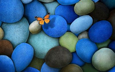 Rocas azules en la playa con una mariposa